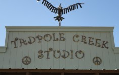 Tadpole Creek Creations