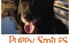 Puppy Smiles Pet Treats & Accessories